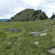Alpe di Cadinello 1828 m