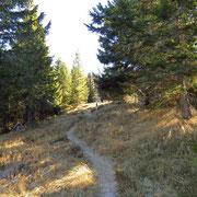 Proseguiamo sulla crestina per l'Alpe di Gesero