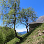 Stavel 1347 m