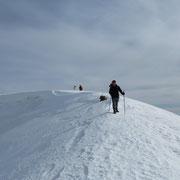 Discesa all'Alpe Pietrarossa