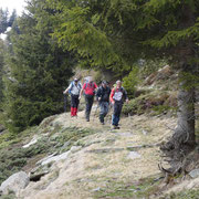 Verso l'Alp de Martum