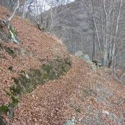 Sentiero per Giorledo