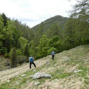 Ritorniamo all'Alpe del Tiglio