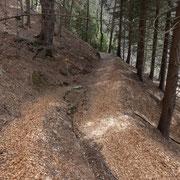Tasséra 964 m