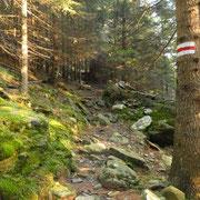 Salgo all'Alp de Carnac