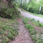 Ritorniamo sulla strada per imboccare il sentiero che sale a Maruso