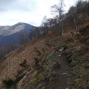 Arrivati a La Bassa proseguiamo verso l'Alpe Nisciora