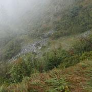 Sul sentiero per l'Alpe di Sassello e Monti della Gana