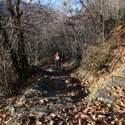 Sentiero per Cortone e Salmone
