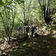 Sentiero per l'Alpe Duragno