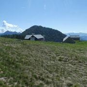 Alpe Saléi  1777 m