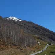 Arrivati ai Monti del Tiglio 1091 m