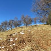 Da La Bassa verso il Monte Gradiccioli