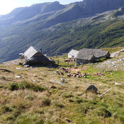 Alpe di Porcaresc 1796 m