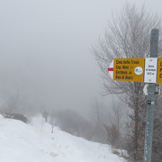 Dalla Bassa di Cardada scendiamo all'Alpe Cardada
