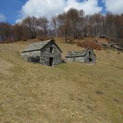 Alpe Orino 1395 m