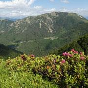 Covreto, Paión e Monte Gambarogno