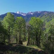 Mont de Lava 1051 m