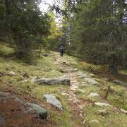 Sul sentiero che conduce all'Alpe Nara