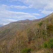 Verso i Monti di Cùrsolo
