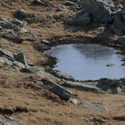 Laghetto di Piancabella 2293 m