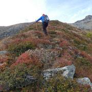 A quota 2051 m abbandoniamo il sentiero del Passo Bareta e procediamo sulla costa ...