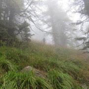 Salita nella nebbia verso Pianca Grande