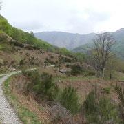 Verso l'Alpe di Coransù