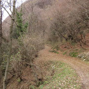 Partiamo da Arogno (Cottima) 710 m