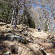 Ripido sentiero dall'Alpe Motarina all'Alpe Matro Càuri