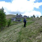 Arrivati all'Alpe Pluni 1461 m