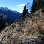 Dall'Alpe Fossada saliamo alla Biscia
