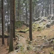 Monti di Visnago 1180 m