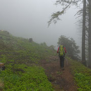 Nella nebbia verso l'Alpe Nara