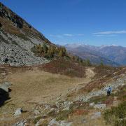 Discesa all'Alpe del Gualdo