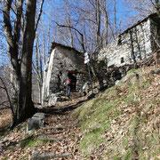Alpe Pizzocca 714 m