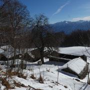 Alpe Casone  1284 m