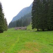 Alp de Val d'Arbola 1255 m