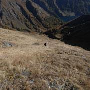 Discesa nella Val Dros
