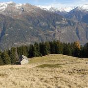 Alpe Tarch 1734 m