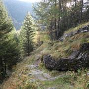 Salita verso Brönich