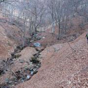 Verso l'Alpe di Piero