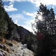 Sentiero che dalla Biscia conduce al Passo San Jorio