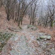 Salita ai Monti di Camignolo