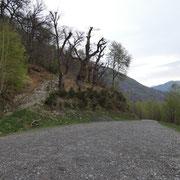 Fine della strada sotto i Monti di Mezzovico 789 m