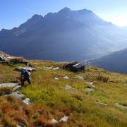 Alpe Scaione 2189 m