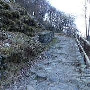 Sentiero per Monteviasco (per chi sale a piedi come noi)