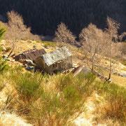 Alpe Fossada 1460 m