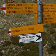 Ritorno all'Alpe Foppa