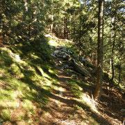 Salita all'Alpe Pisciarotto